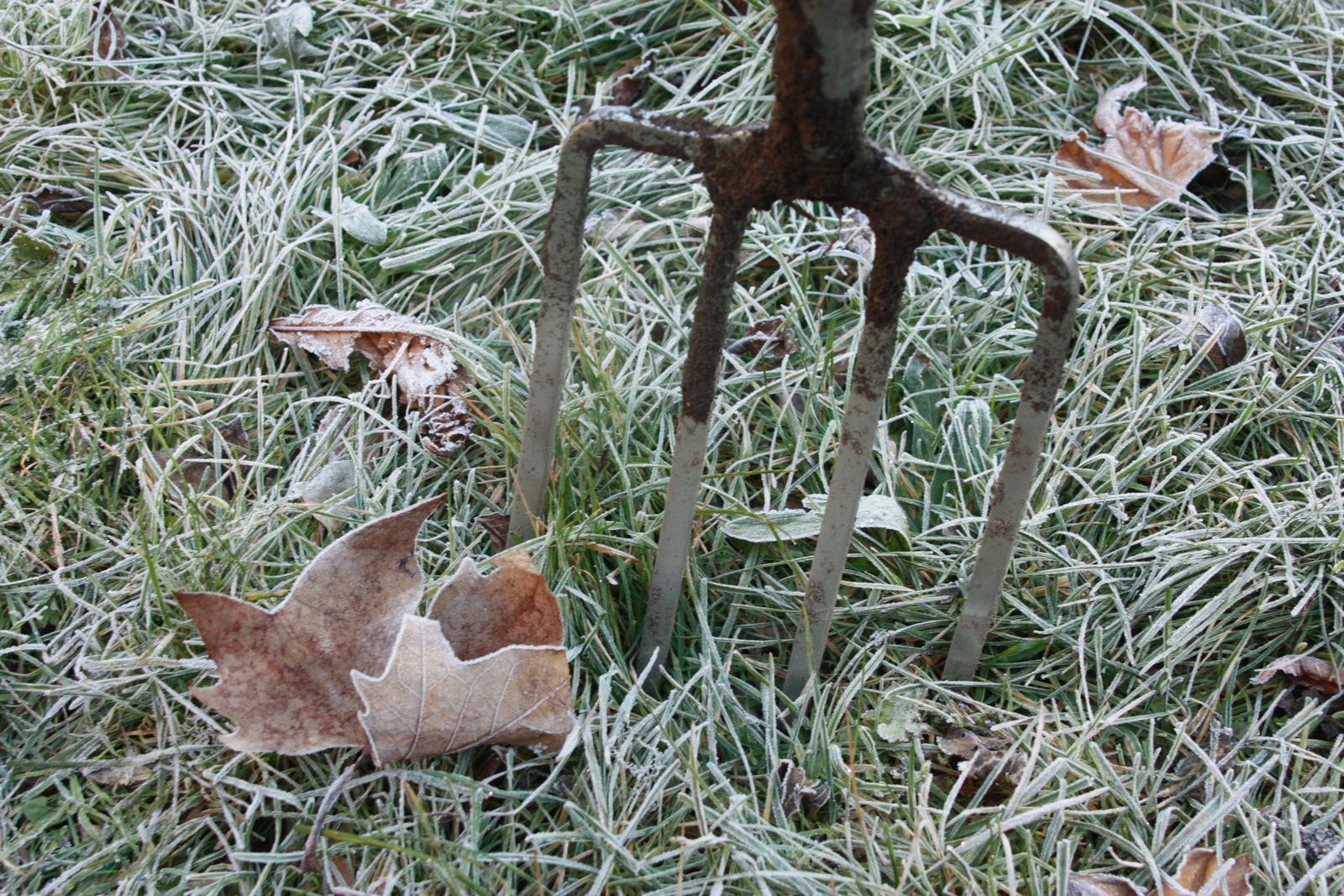 Frosty fork
