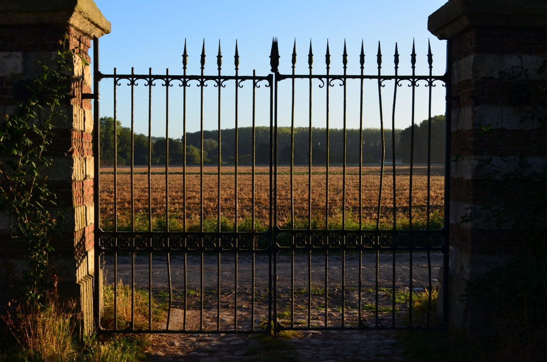 Looking out the gates at the farm.