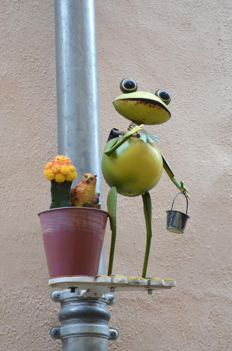 Monsieur Kermit