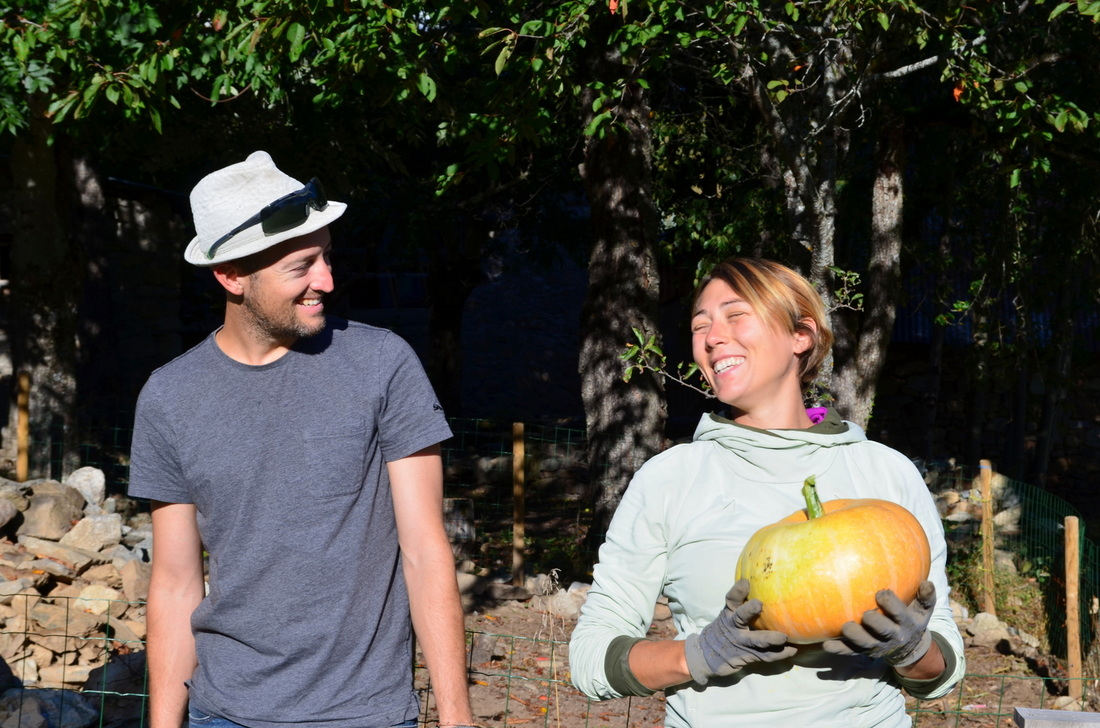 Jean and our hostess Anne harvesting pumpkins